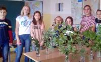 Podzimní poznávání rostlin